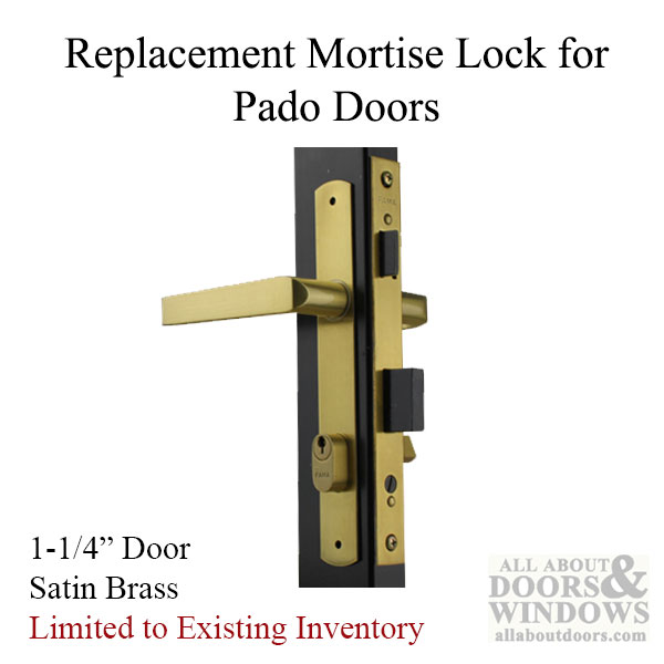 Fama Replacement Mortise Lock For Pado Security Storm
